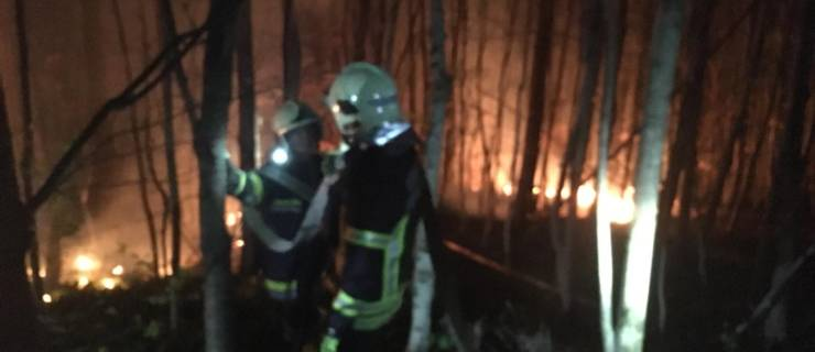 Flurbrand Exelberg in der Nähe des Richtfunkturms
